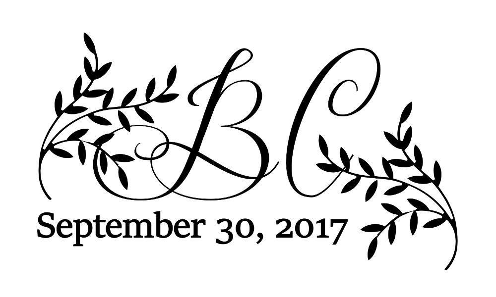 bret ashdown and caitlin strombergs wedding website