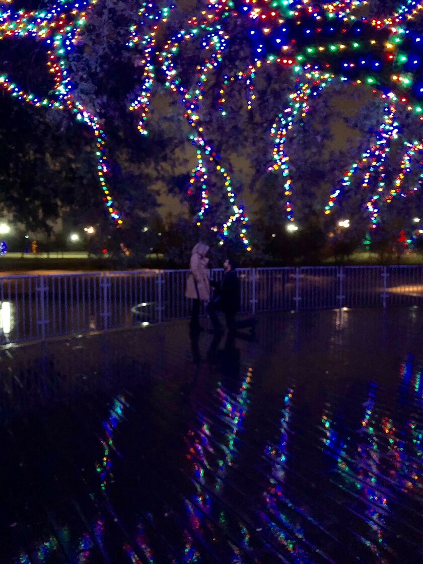 Elara Medlin And Christopher Gonzaless Wedding Website Christmas Lights On A T Question I Received Elaras Ring At The Beginning Of November Started Brainstorming Ideas How To Pop Knew It Had Be Something Spontaneous