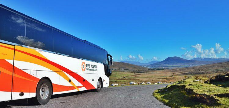 porno bus escort tours