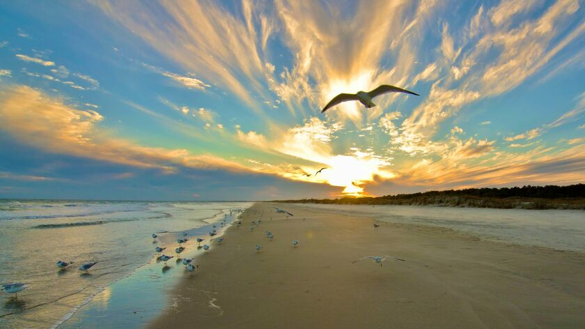 Fly To North Myrtle Beach Sc