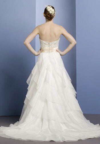 Lo Ve La by Liz Fields Wedding Dresses 9051 A Line  BallLo Ve La by Liz Fields Wedding Dresses 9051 Wedding Dress   The Knot. Liz Fields Wedding Dresses. Home Design Ideas