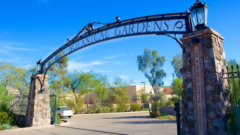 Tucson Botanical Gardens. 2150 N Alvernon Way, Tucson, AZ 85712, USA  520.326.9686
