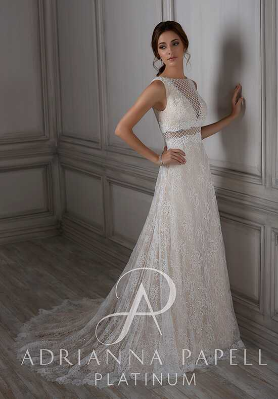 Adrianna Papell Platinum Ida A-Line Wedding Dress