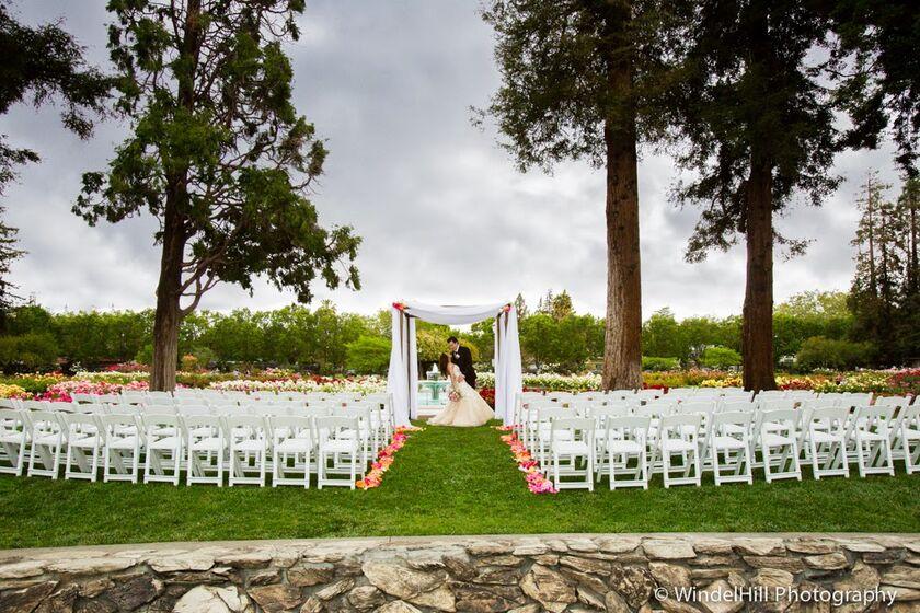 Stephanie Velasco And Pedro Velasco 39 S Wedding Website