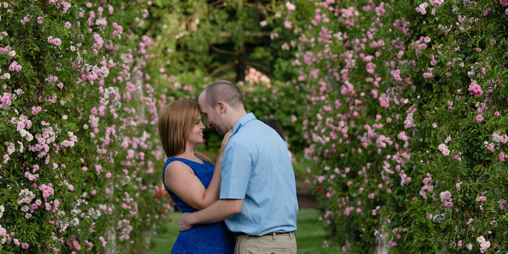 alyssa schankman and michael harriss wedding website