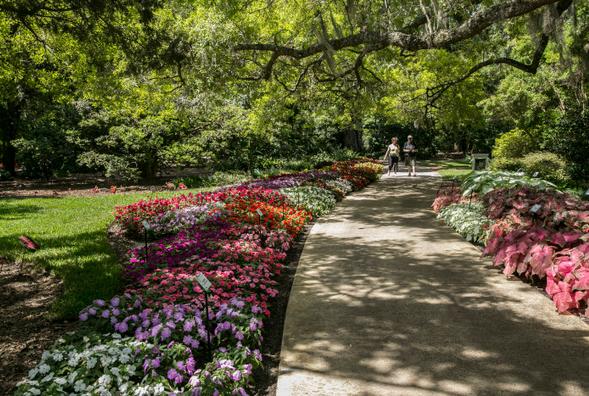 Image Result For Central Park Rose Garden Winter Park Fl Wedding