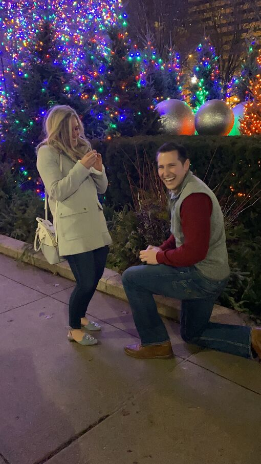 Picture of The Proposal
