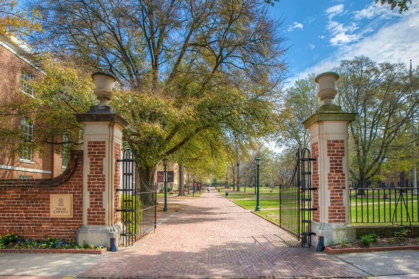 university of south carolina admissions essay