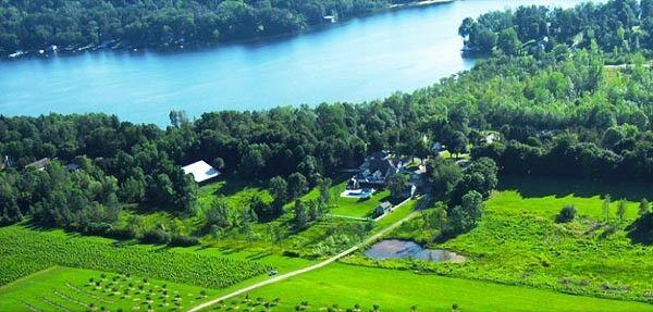 Owera Vineyards