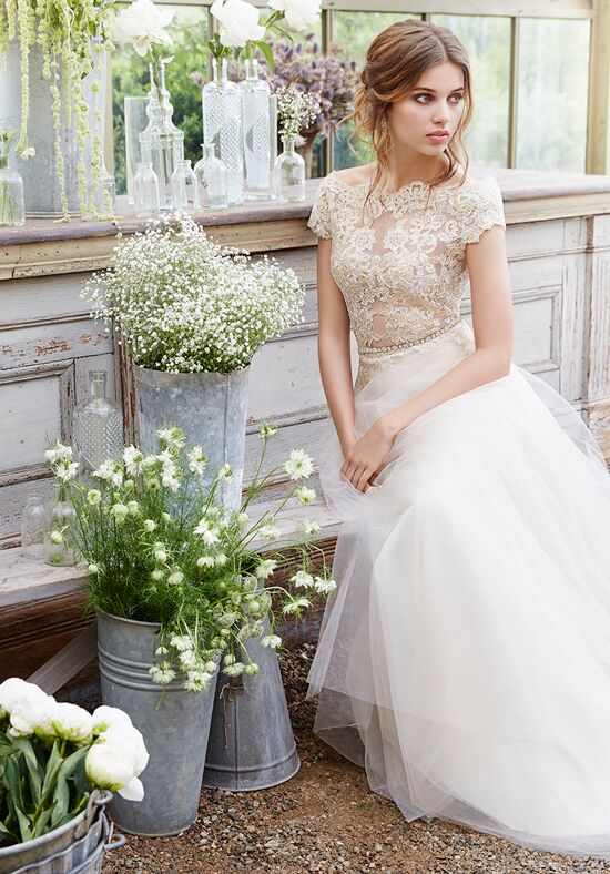 Tara Keely by Lazaro 2650 A-Line Wedding Dress