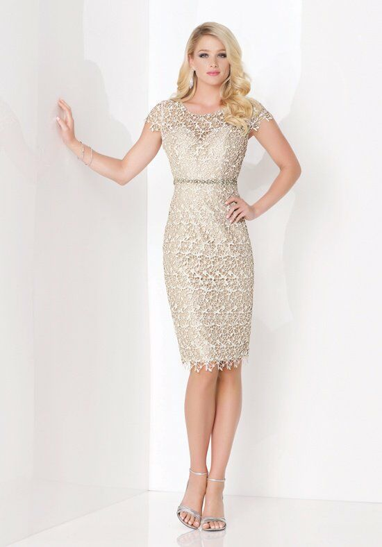 The Mother of Bride Short Dresses for Fall